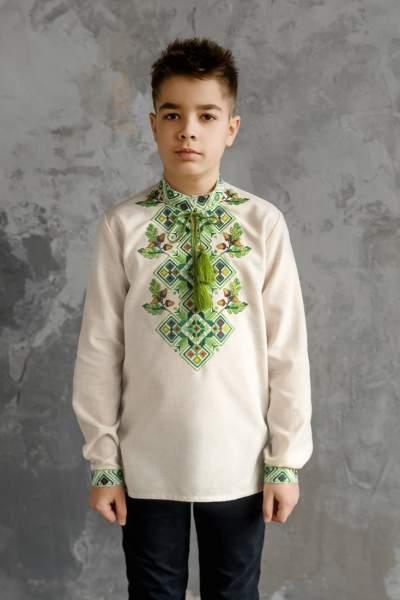 Сорочка на хлопчика, арт. 4435 еліт