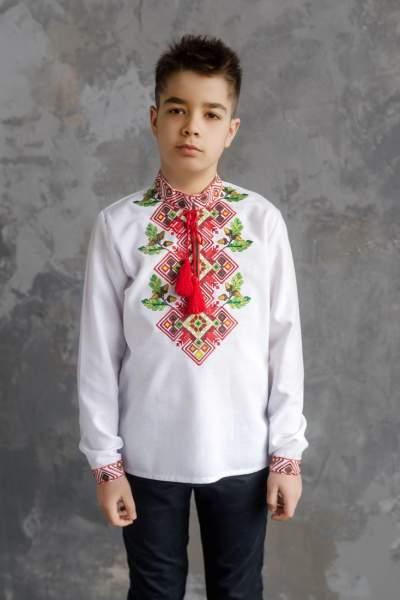 Сорочка на хлопчика, арт. 4436 бавовна