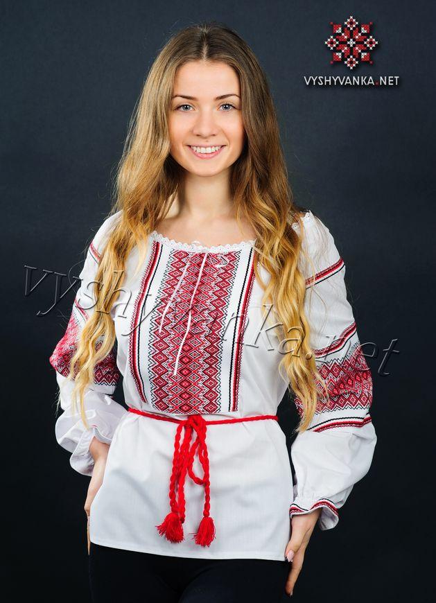 платья трикотажные 2012 танго